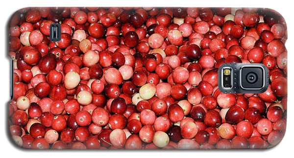 Cape Cod Cranberries Galaxy S5 Case