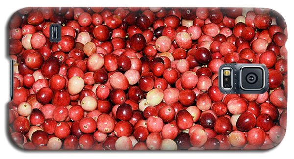 Cape Cod Cranberries Galaxy S5 Case