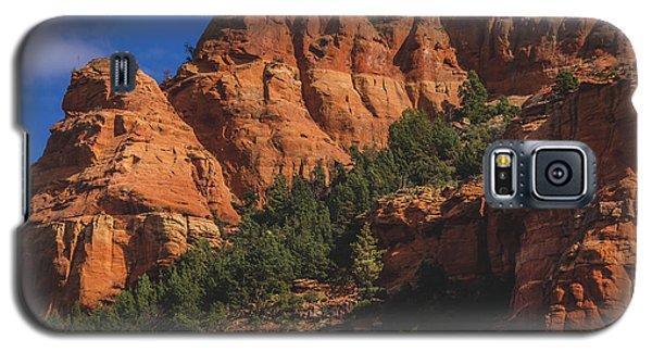Capitol Butte Details Galaxy S5 Case