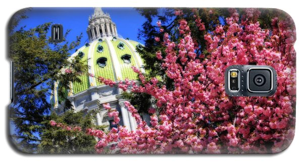 Capitol In Bloom Galaxy S5 Case by Shelley Neff