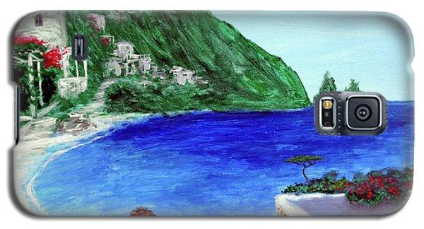Capri Galaxy S5 Case by Larry Cirigliano