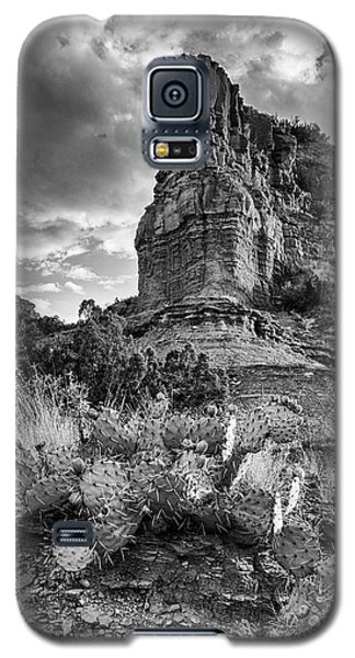 Galaxy S5 Case featuring the photograph Caprock And Cactus by Stephen Stookey