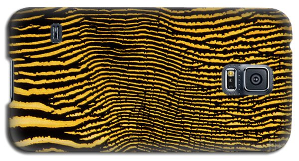 Interlaced Lines Galaxy S5 Case
