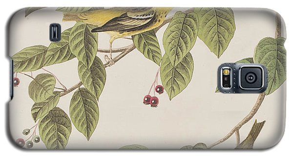 Carbonated Warbler Galaxy S5 Case by John James Audubon