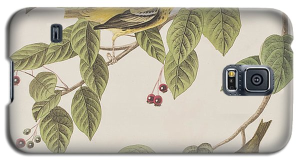 Carbonated Warbler Galaxy S5 Case