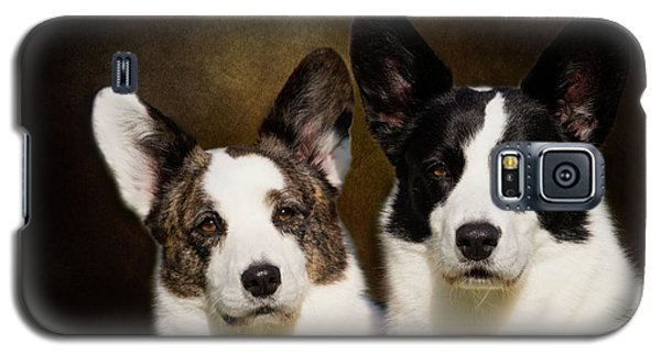 Cardigan Corgis Galaxy S5 Case