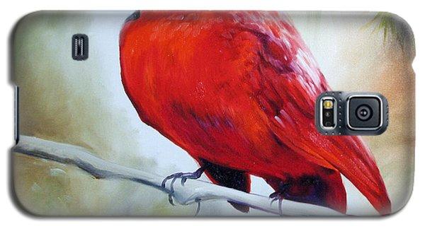 Cardinal 18 Galaxy S5 Case