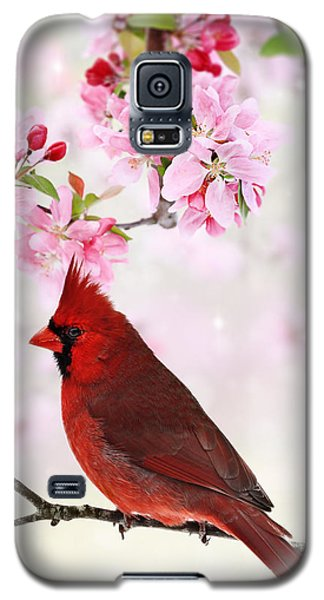 Cardinal Amid Spring Tree Blossoms Galaxy S5 Case