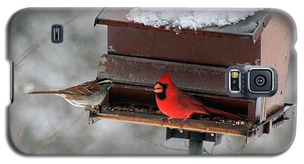 Cardinal And Sparrow At Feeder Galaxy S5 Case by George Jones