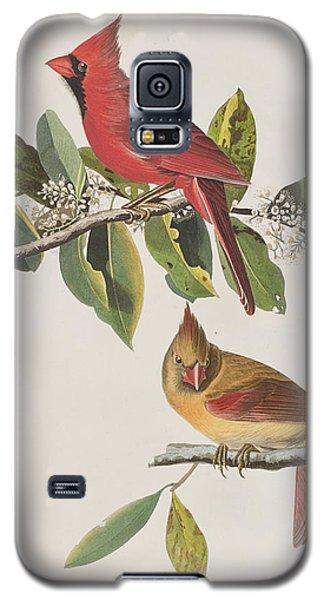 Cardinal Grosbeak Galaxy S5 Case by John James Audubon