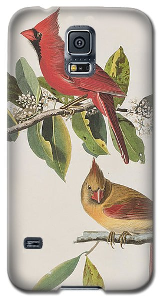 Cardinal Grosbeak Galaxy S5 Case by John James Audubon