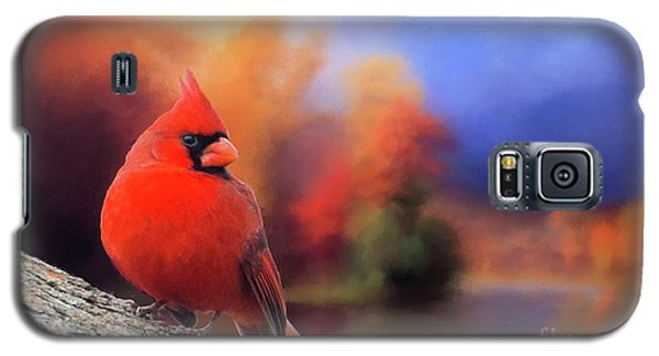 Cardinal In Autumn Galaxy S5 Case by Janette Boyd