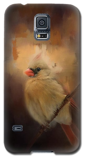 Cardinal In The Evening Light Bird Art Galaxy S5 Case