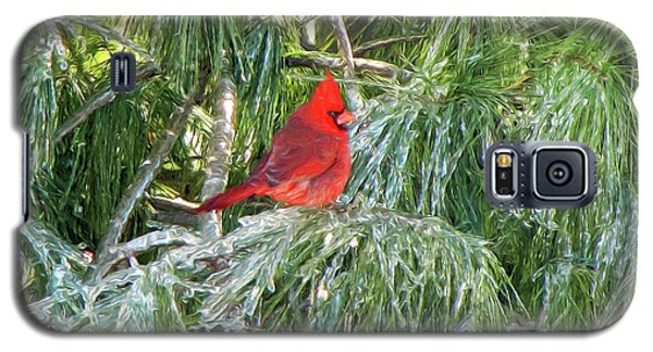 Cardinal On Ice Galaxy S5 Case by John Freidenberg