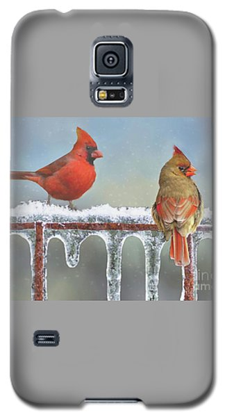 Cardinals And Icicles Galaxy S5 Case by Janette Boyd