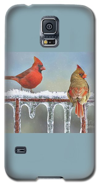 Cardinals And Icicles Galaxy S5 Case