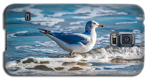 Outer Banks Obx Galaxy S5 Case