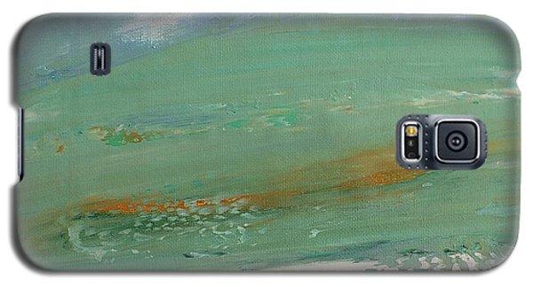 Caribbean Galaxy S5 Case