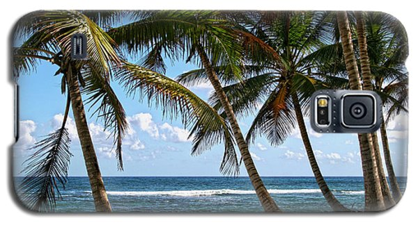 Caribbean Palms Galaxy S5 Case