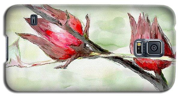 Caribbean Scenes - Sorrel Plant Galaxy S5 Case by Wayne Pascall