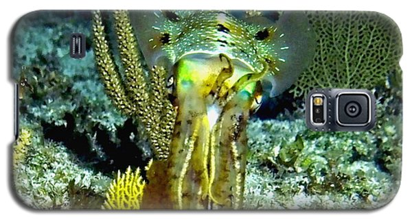 Galaxy S5 Case featuring the photograph Caribbean Squid At Night - Alien Of The Deep by Amy McDaniel