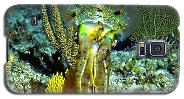 Caribbean Squid At Night - Alien Of The Deep Galaxy S5 Case