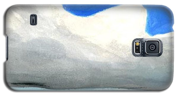 Caribbean Trade Winds Galaxy S5 Case by Dick Sauer
