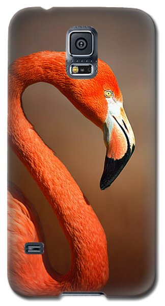 Flamingo Galaxy S5 Case - Caribean Flamingo Portrait by Johan Swanepoel