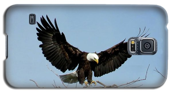 Cape Vincent Eagle Galaxy S5 Case