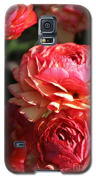 Carnival Of Flowers 02 Galaxy S5 Case