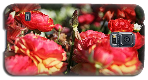 Carnival Of Flowers 04 Galaxy S5 Case