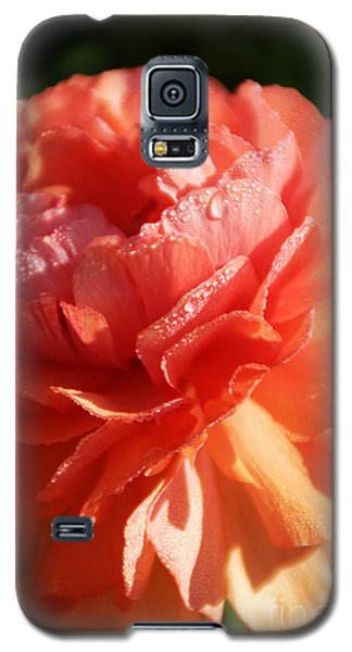 Carnival Of Flowers Galaxy S5 Case