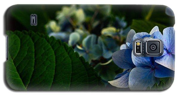 Carolina Blues Galaxy S5 Case