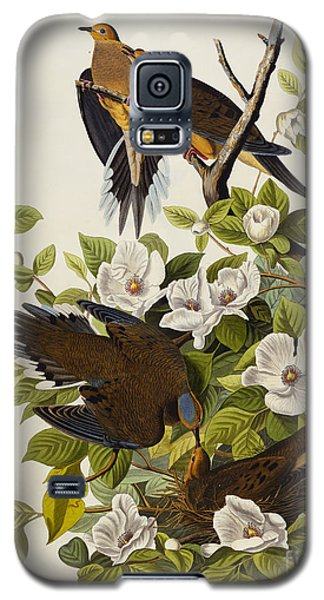 Carolina Turtledove Galaxy S5 Case by John James Audubon