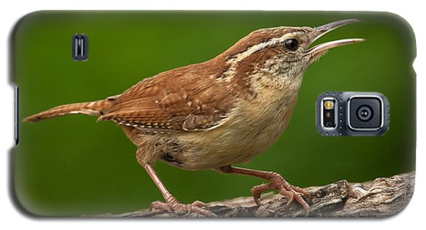 Galaxy S5 Case featuring the photograph Carolina Wren by Jim Moore