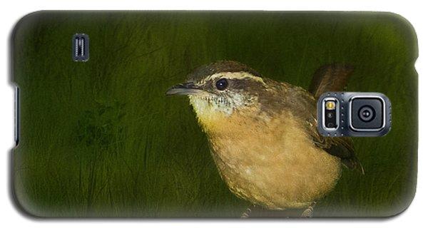 Carolina Wren Galaxy S5 Case