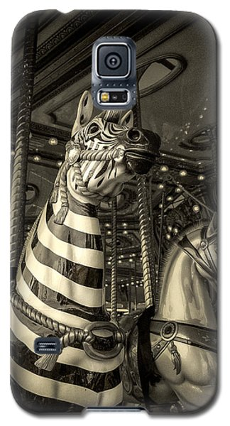 Galaxy S5 Case featuring the photograph Carousel Zebra by Caitlyn Grasso