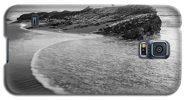Carpinteria Seagull Galaxy S5 Case