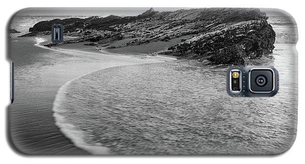 Carpentaria Seagull Galaxy S5 Case