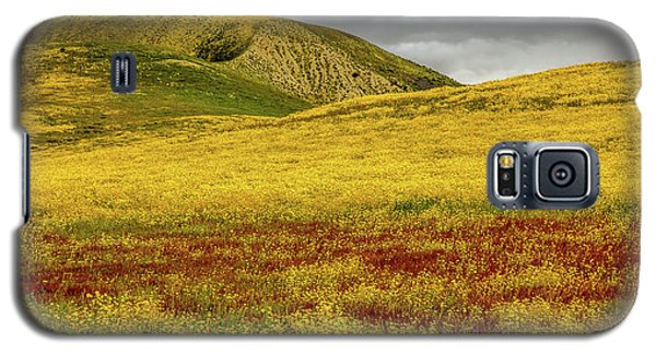 Galaxy S5 Case featuring the photograph Carrizo  Plain Super Bloom 2017 by Peter Tellone