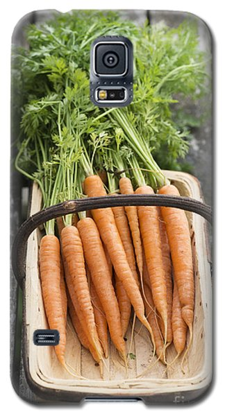 Carrots Galaxy S5 Case by Tim Gainey
