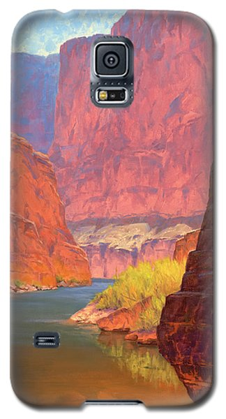 Grand Canyon Galaxy S5 Case - Carving Castles by Cody DeLong