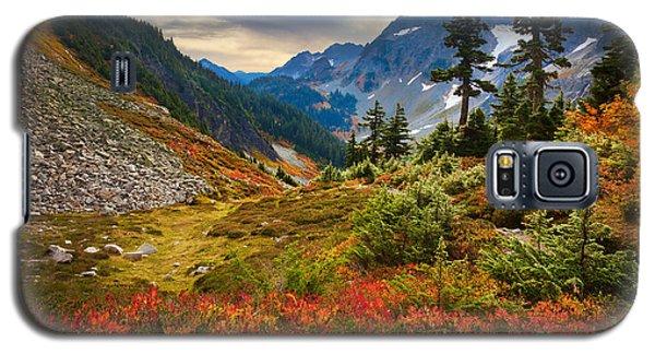 Cascade Pass Fall Galaxy S5 Case