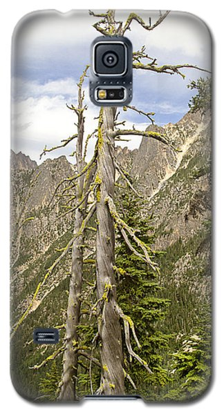 Cascades Tree Galaxy S5 Case