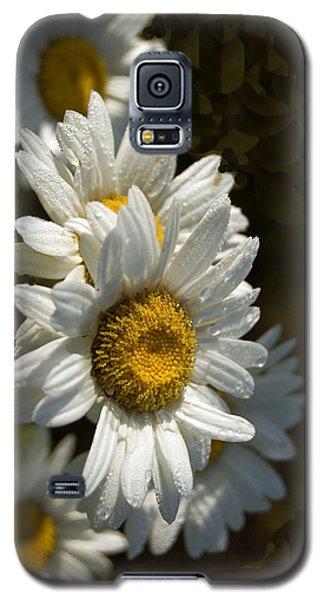 Cascading Daisy Galaxy S5 Case