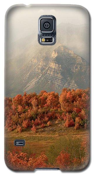 Cascading Fall Galaxy S5 Case