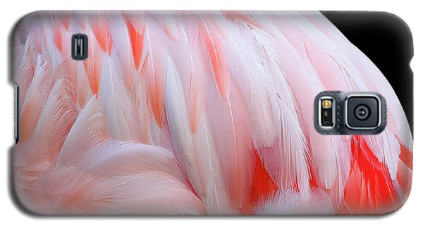 Galaxy S5 Case featuring the photograph Cascading Feathers by Elvira Butler