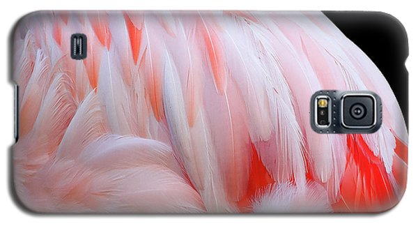 Cascading Feathers Galaxy S5 Case