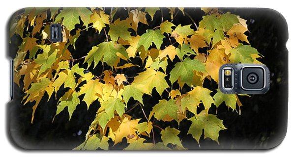 Galaxy S5 Case featuring the photograph Cascading Leaves by Doris Potter