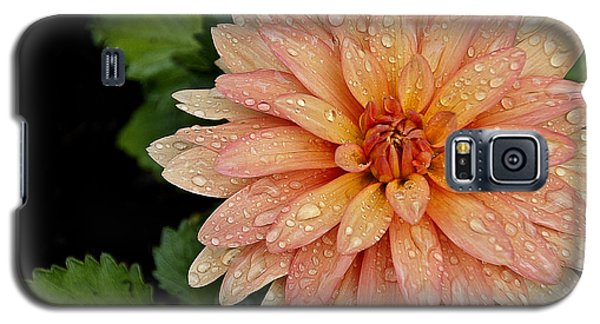 Cascading Rain Droplets Galaxy S5 Case by Deborah Klubertanz